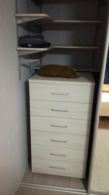 Встроенная гардеробная комната